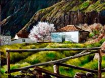Autor. Juan Alberto Diaz Titulo de la obra :INVIERNO EN AYACATA , Gran Canaria Medida 55x 46 Técnica : oleo sobre lienzo. 2006